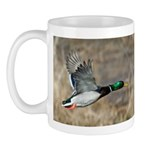 Mallard Flying Mug