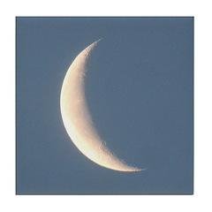 Sliver of Moonlight Tile Coaster