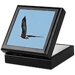 Flyaway Eagle Keepsake Box