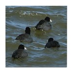 Coots in Rough Water Tile Coaster