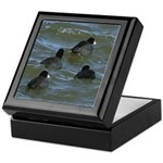 Coots in Rough Water Keepsake Box