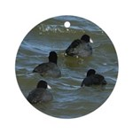 Coots in Rough Water Ornament (Round)
