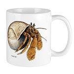 Hermit Crab Mug