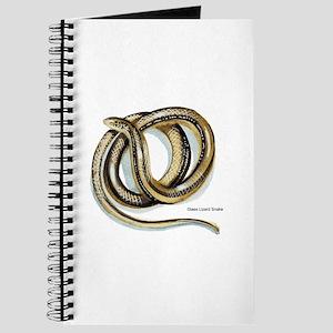 Glass Lizard Snake Journal