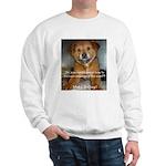 Make it Stop 5 Sweatshirt