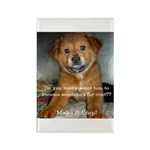 Make it Stop 5 Rectangle Magnet (100 pack)