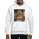 Make it Stop 5 Hooded Sweatshirt