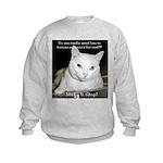 Make it Stop 6 Kids Sweatshirt