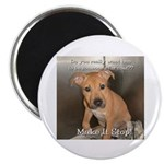 "Make It Stop 8 2.25"" Magnet (100 pack)"