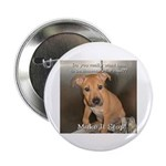 "Make It Stop 8 2.25"" Button (100 pack)"