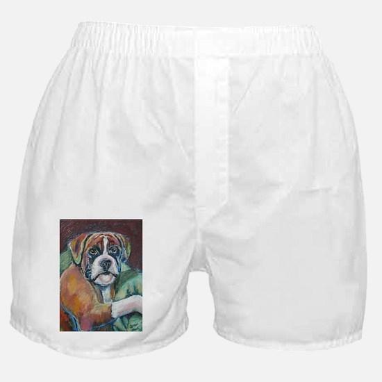 Boxing a Boxer Boxer Shorts