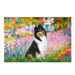 Garden / Collie Postcards (Package of 8)