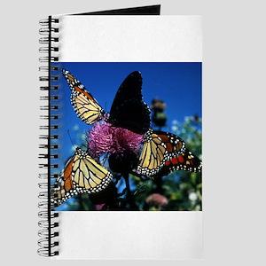Monarch Butterflies Journal