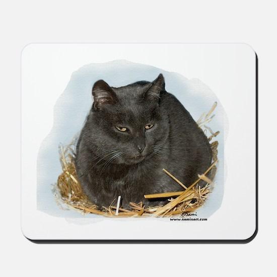 Jonesy the Chartreaux Cat Mousepad