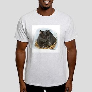 Jonesy the Chartreaux Cat Ash Grey T-Shirt