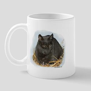 Jonesy the Chartreaux Cat Mug