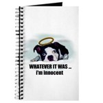 WHATEVER IT WAS -IM INNOCENT Journal