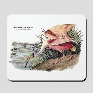 Audubon Spoonbill Bird Mousepad