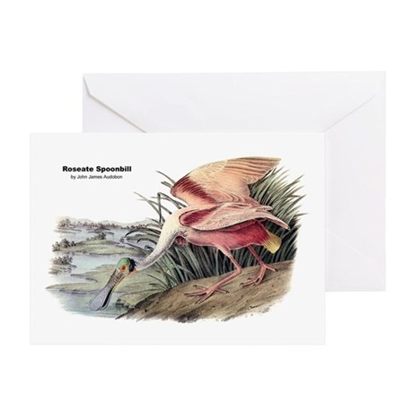 Audubon Spoonbill Bird Greeting Card