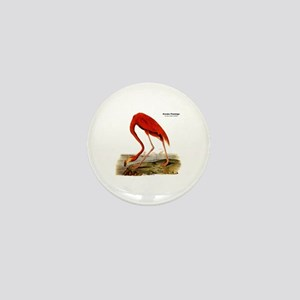 Audubon Flamingo Bird Mini Button