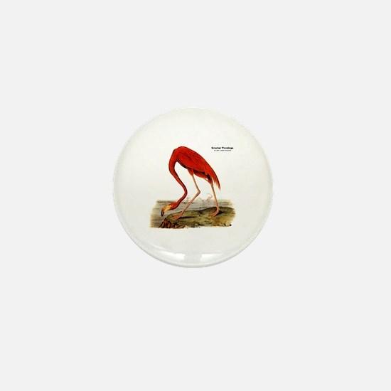 Audubon Flamingo Bird Mini Button