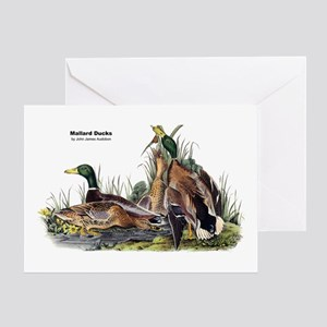 Audubon Mallard Ducks Greeting Card