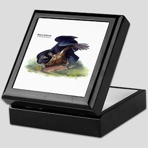 Audubon Black Vultures Bird Keepsake Box