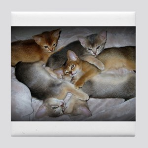 Abyssinian kittens Tile Coaster
