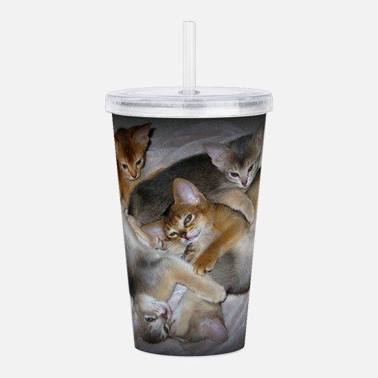 Abyssinian kittens Acrylic Double-wall Tumbler
