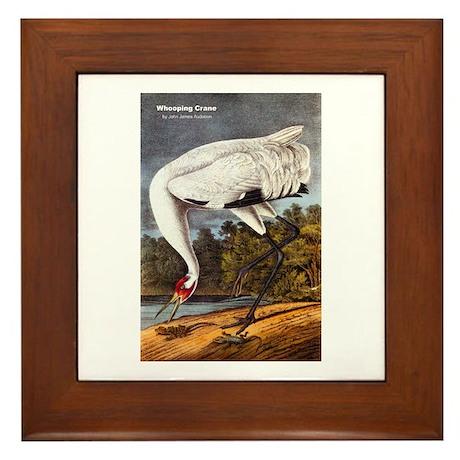 Audubon Whooping Crane Bird Framed Tile