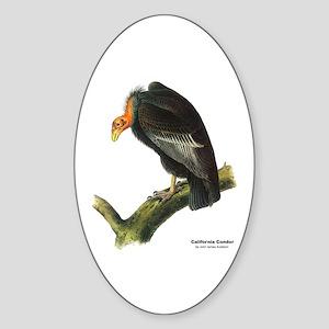 Audubon California Condor Bird Oval Sticker