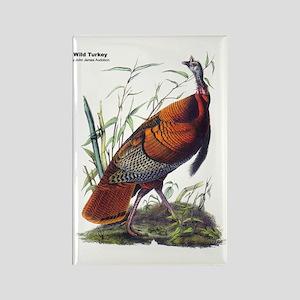 Audubon Wild Turkey Bird Rectangle Magnet
