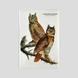 Audubon Great Horned Owls Rectangle Magnet
