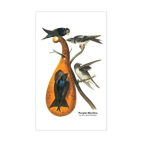 Audubon Purple Martins Bird Rectangle Sticker