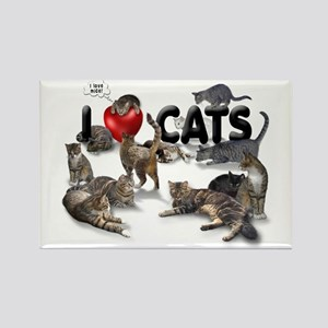 "Rectangle Magnet ""I love Cats"""