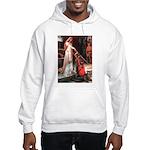 Accolade / English Setter Hooded Sweatshirt