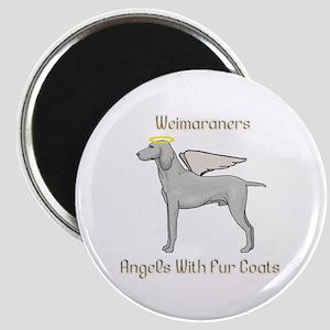 Weimaraners Angels With Fur Coats Magnet