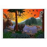 Kid's Canada Wildlife Art Posters