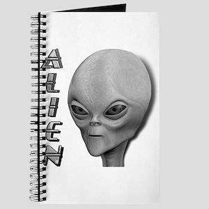 Alien Type 1 Grey Part 2 Journal