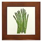 Fresh Asparagus Fan Framed Tile