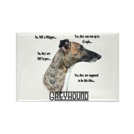 Greyhound FAQ Rectangle Magnet
