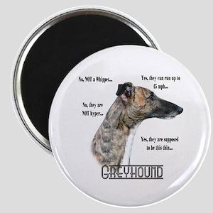 Greyhound FAQ Magnet