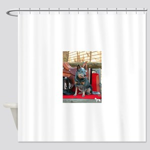 show girl pic copy Shower Curtain