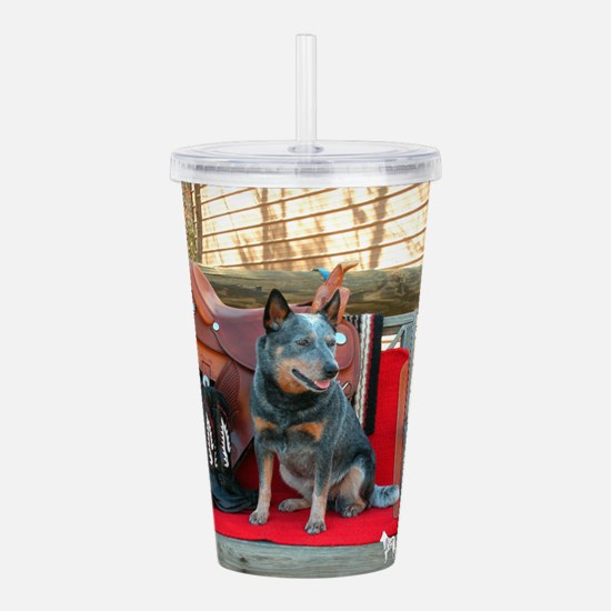 show girl pic copy.png Acrylic Double-wall Tumbler