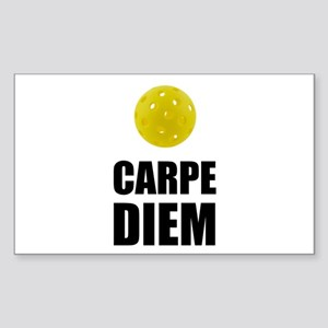 Carpe Diem Pickleball Sticker