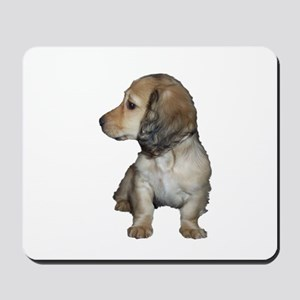 Longhair Doxie Puppy Mousepad