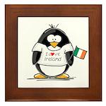 Ireland Penguin Framed Tile