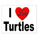 I Love Turtles Small Poster