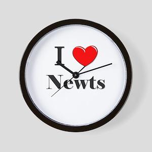 I Love Newts Wall Clock