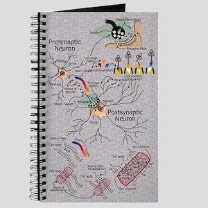 Neural Firings Journal